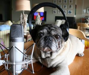 podcastingDOG